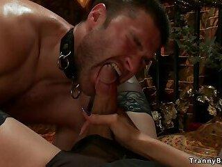Busty shemale dominatrix banging male