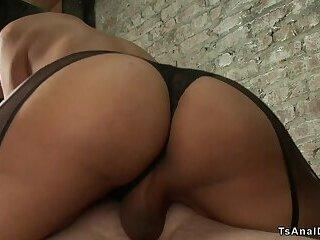 Busty shemale beauty anal bangs guy