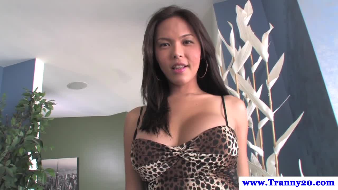 pretty ladyboy shemale and tranny porn videos - most popular - today