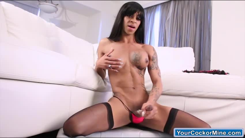 Black dominant tranny